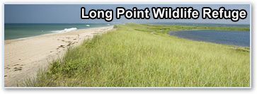 Long Point Wildlife Refuge