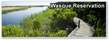 Wasque Reservation